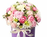 Как ухаживать за цветами в коробке