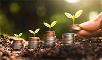 Кредит на покупку земли: какие предложения на рынке?