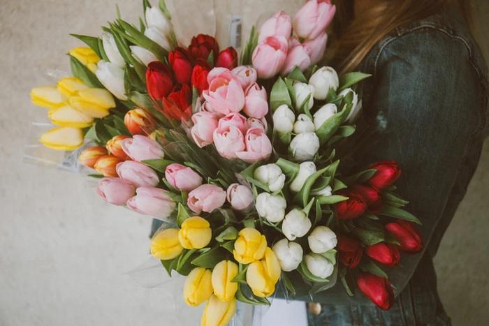 Купить тюльпаны в Киеве