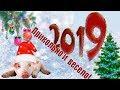 Новогодний футаж HD👍поздравление с новым Годом 2019 видео🐖футаж бесплатно footage🐖