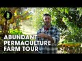 Beautiful 1-Acre Small Scale Permaculture Farm | Limestone Permaculture Farm
