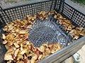 ★Простая СУШИЛКА фруктов из ТЕПЛОВЕНТИЛЯТОРА.Сушилка для овощей #самоделка.Фрукт сушилка овощ