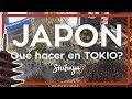 JAPON TOKIO 2019 🍣😲 5 cosas imperdibles que hacer en Tokio   Como viajar a Japon #1