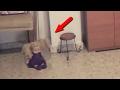 Загадочные существа, призраки, паранормальные явления снятые на видео