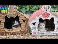 Дом для котиков из картона Строим КОТЭдж для Котэ LizaTube