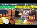 Огород в Америке. Запасы на зиму. Поделки и песня Многодетная Семья Савченко