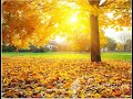 Modern Martina – Равнодушная Осень классная мелодия ★█