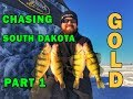 Chasing South Dakota Yellow Gold! JUMBO Yellow Perch Ice Fishing!