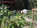 2019 Food Forest Garden Tour