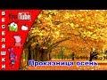 Проказница осень /детская песенка/клип 2017 - Проказница осень, опять ты пришла