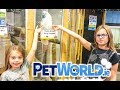 Animals PETWORLD Shop for Animals