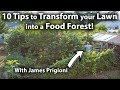 How to TRANSFORM your LAWN into a FOOD FOREST!