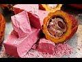 WEIRDEST Foods in the World