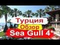 Отдых в Турции. Sea Gull 4* Обзор отеля