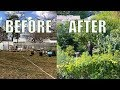 Backyard Garden, Before and After