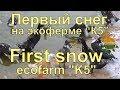 """Первый снег на экоферме """"К5"""""""