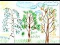 Тест рисунок дерева