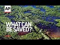 Episode 12 - Everglades Evolution   What Can Be Saved?   AP
