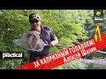 Капризный голавль на попперы в летнюю жару. Алексей Шанин 1 Часть. Anglers Practical