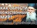 Как обрести Божественный мир? Старец Фаддей Витовницкий