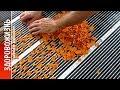 СУШИЛКА ДЛЯ ФРУКТОВ и овощей своими руками. Как сделать хорошую инфракрасную электросушилку ПРОСТО