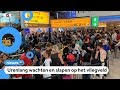 Nog steeds chaos op Schiphol: veel vluchten gaan niet door