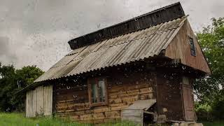 Rain On A Tin Roof The Relaxing Sound Of Raining On A